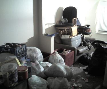Hoarding apartment trash picture 2