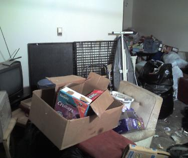 Hoarding apartment trash, picture 1