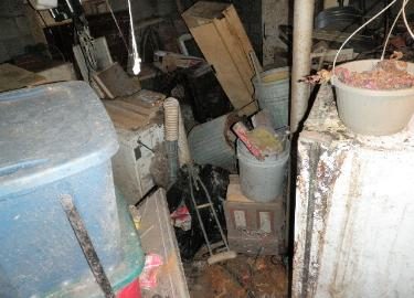 View 1 of hoarder's basement