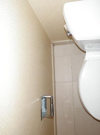 Bathroom of national chain hotel suite cleaned, decontaminated and deodorized.