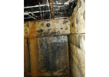 Water, rust & mold damage in basement from broken water line