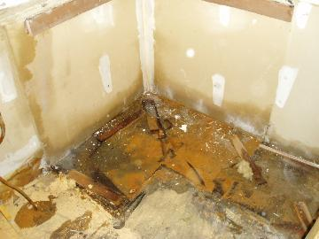 Mold & water damage from broken water line in kitchen